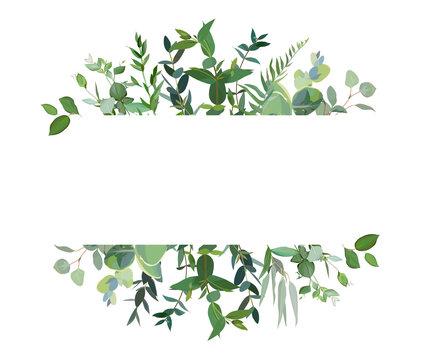 Horizontal botanical vector design banner.