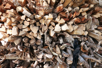 Wall Mural - Pile of firewood