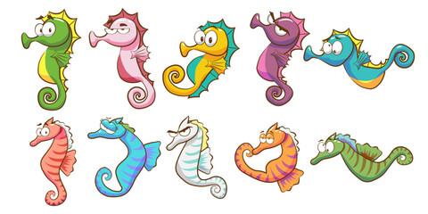 seahorse vector set collection graphic clipart design