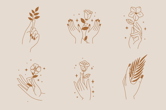 Vector abstract logo and branding design template in trendy linear minimal style - hand holding leaf- concept for natural beauty and organic skincare products