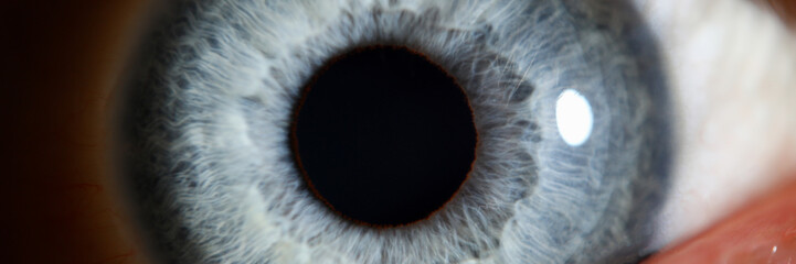 Spoed Fotobehang Iris Blue eye male human super macro closeup. Healthy vision test concept