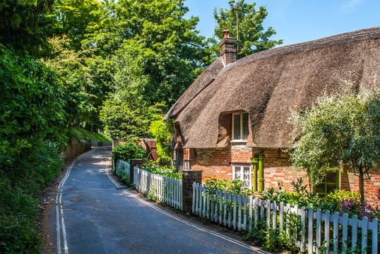 Dorset cottage with a thatched roof in summer