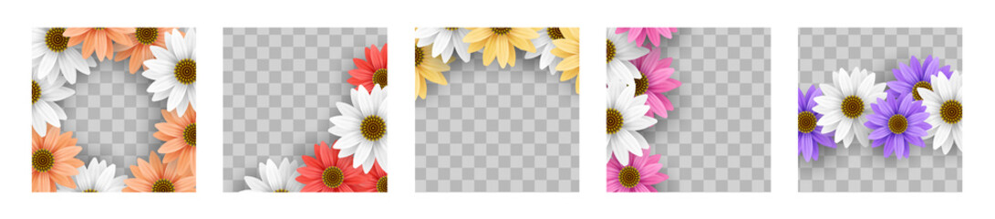 Set of colorful gerbera daisy flower floral frame on transparent background vector template