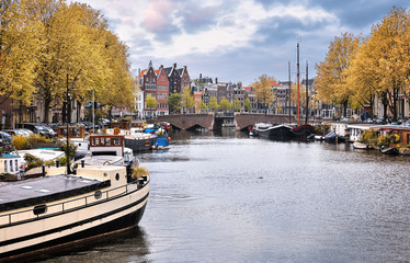 Fototapete - Netherlands Amsterdam. View at river Amstel with boats bridge and traditional houses. Picturesque city landscape. Autumn day in touristic urban with yellow tree.