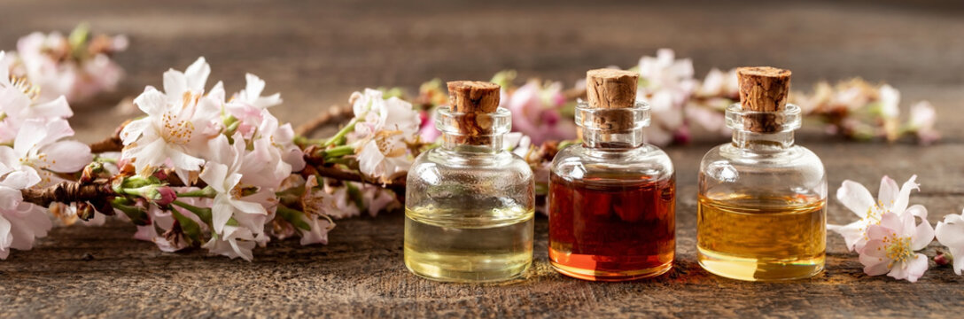 Panoramic header of essential oil bottles with blooming tree branches