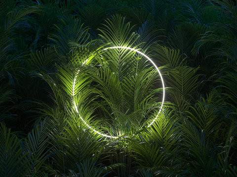 Creative layout made of tropical leaves with white square neon frame. Minimal nature concept. Flat lay