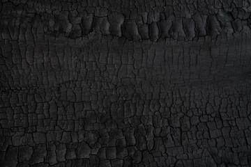 Photo sur Aluminium Texture de bois de chauffage Wood charcoal texture. Burnt tree. Black coal background