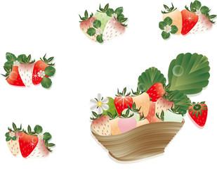 イチゴとイチゴの花や葉を器に飾ったイラストのカラフルイチゴセットイラスト