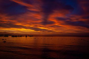 Türaufkleber Violett rot Mauritius