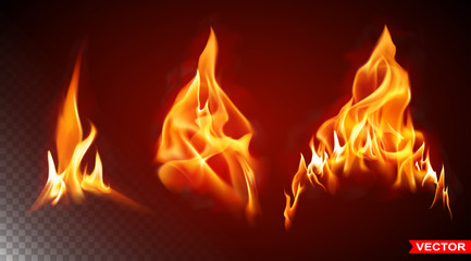Realistic burning big fire flames with shiny bright elements. Isolated on black background. Power, fuel and energy symbol. Layered vector icon set. Wall mural