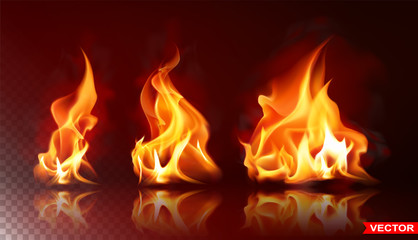 Realistic burning fire flames with shiny bright elements. Isolated on black background. Power, fuel and energy symbol. Layered vector icon set. Fotomurales