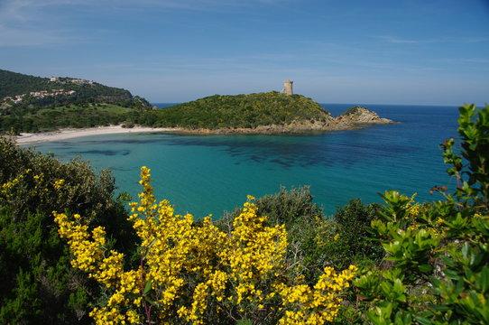 La plage de Fautea en Corse