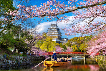 Wall Mural - Cherry blossoms and castle in Himeji, Japan.