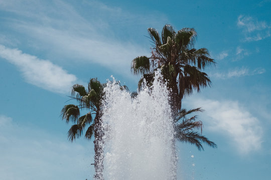 Low Angle View Of Fountain By Palm Trees Against Sky