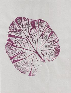 Botanical art printed plant, leaf in purple