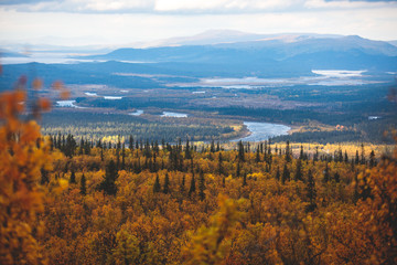 Canvas Prints Blue Swedish autumn fall vibrant landscape during hiking to Kurravaara mountain in Norrbotten county, Kiruna Municipality, Northern Sweden