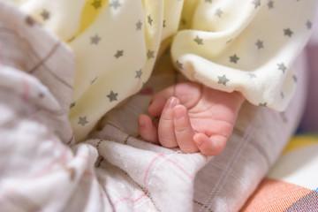 写真素材:赤ちゃん、手、クローズアップ、服、片手