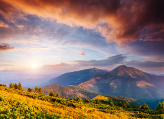 Wall Mural - Picturesque sunset in the summer mountains. Evening light illuminates the valley.