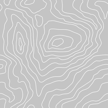 Topographic map lines, earth relief, contour seamless background. Geographic grid, elevation map,  in gray colors. Vector abstract pattern.