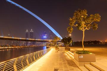 Foto op Canvas Oceanië Tolerance Bridge in Dubai city, night scene