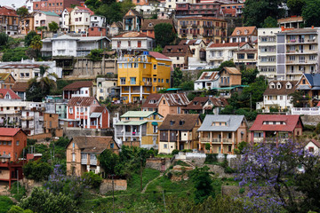View of old town of Antananarivo with colourful houses and Jacaranda tree, Madagascar