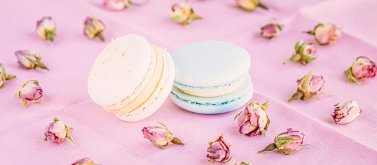 Photo sur Plexiglas Macarons Selective focus on macarons with cream and the buds of dried roses.