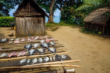 Drying fish at a remote fishing village squeezed between the rainforst and coral reef, Tampolo, Masoala National Park, Madagascar