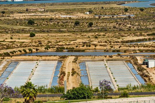 The salt marsh in castro marim, algarve , Portugal