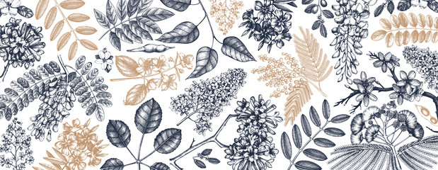 Vector background with spring trees in flowers illustrations. Hand drawn blooming plant. Vector flower, leaves, branch, trees