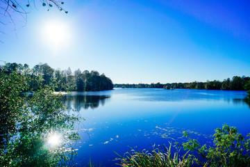 Hillsborough river at Tampa, Florida  Fotomurales
