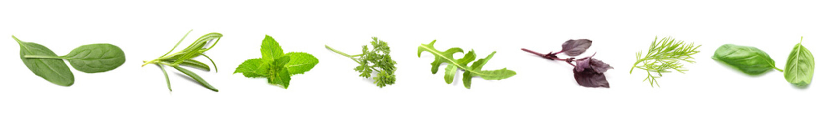 Different fresh herbs on white background Fotobehang