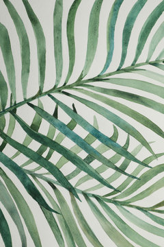 Beautiful watercolor tropical leaves painted on white paper, top view