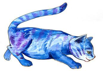 a cute blue cat - aquarell picture