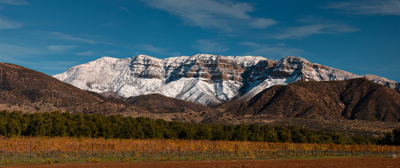 Snow covered Topa bluffs over Ojai Valley farms and vineyards