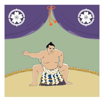 相撲 横綱