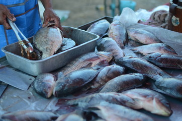 Close-Up Of Vendor Selling Fishes In Market
