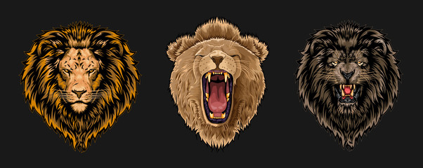 Lion face vector set collection graphic clipart design