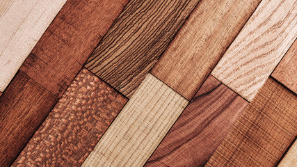 Set of exotic valuable wood for the catalog, texture and structure of the material