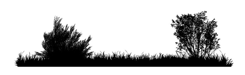 Vector silhouette of meadow on white background. Symbol of nature with grass. Fototapete