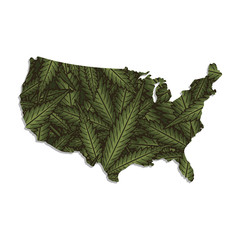 Vector map of the USA with a background of marijuana leaves. Isolated vector Illustration.