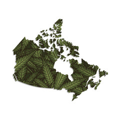 Vector map of the Canada with a background of marijuana leaves. Isolated vector Illustration.