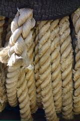 乗馬場の備品の太くて固いロープ