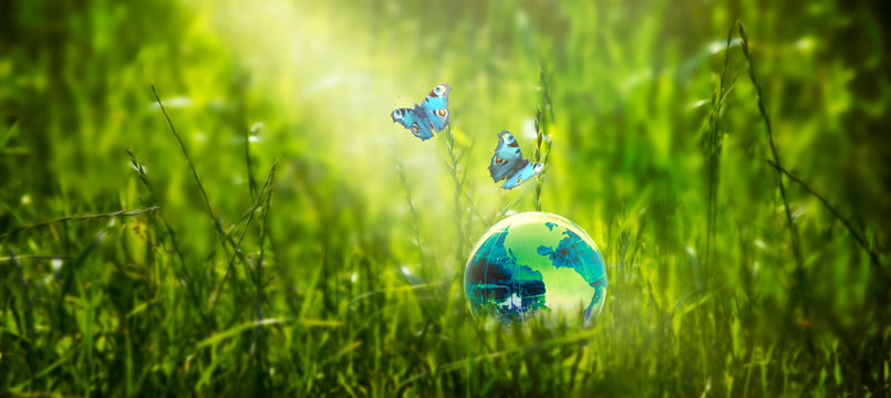 Card for World Earth Day. Saving environment, save clean green planet, ecology concept. Earth crystal globe on fresh grass lawn background, peacock eye butterflies. Ray of sunshine illuminates planet.