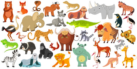 Set of funny animals, birds and reptiles from all over the world. World fauna. Illustration