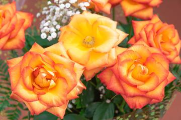 Orange roses bouquet, close view