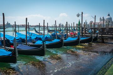 Foto auf AluDibond Gondeln Venice. Gondolas. Blue sea and sky. Sunny day in Italy. Amazing view of Blue Lagoon in Venice with Gondolas. Jetty. Travel Tourism Concept.