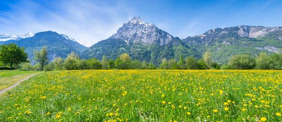 Acrylic Prints Meadow Swiss meadows.