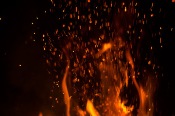 Foto op Canvas Vuur fire on a black background orange flame night fire
