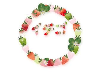いちごや苺の花や葉のイラストで書いた文字販促用横スタイルA4背景素材文字あり