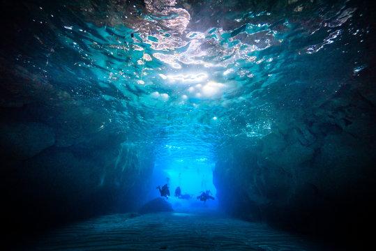 view of scuba divers underSEA